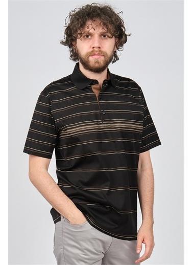 Arslanlı Arslanlı Erkek Çizgili Polo Yaka T-Shirt  Siyah